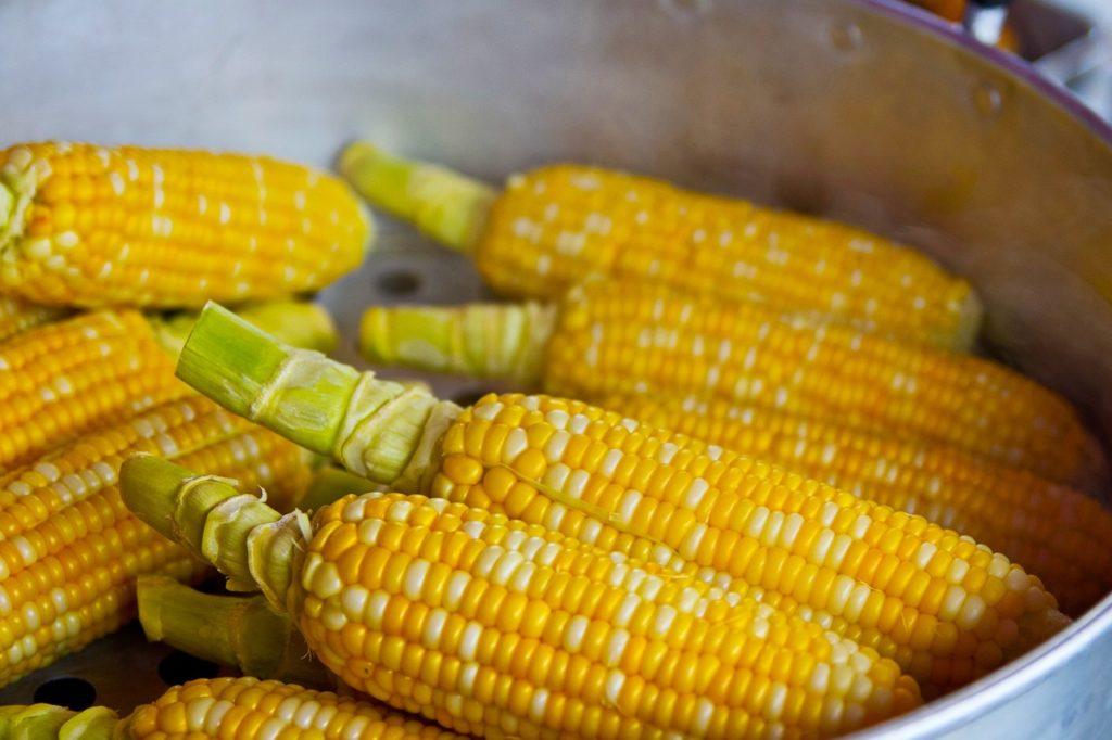 events in franklin tn: sweet corn festival