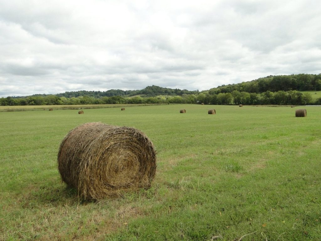 Shot of a hay bale sitting on acres and acres of green pasture.