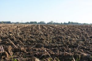 a picture of soil ready to for farming