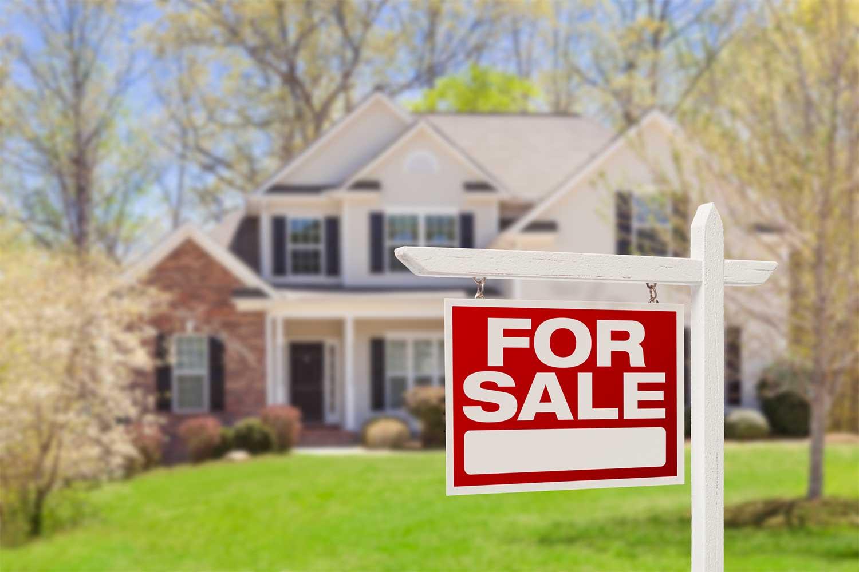 large acreagr property for sale